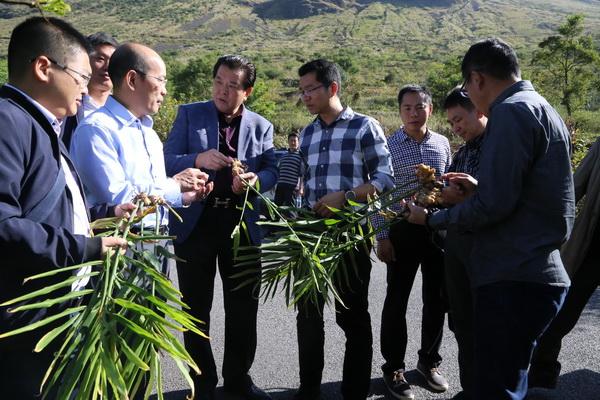 东莞横沥镇党政考察团赴巧家开展对口帮扶工作