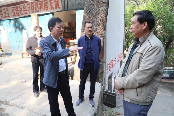 张华昆到白鹤滩镇棉沙村调研移民工作