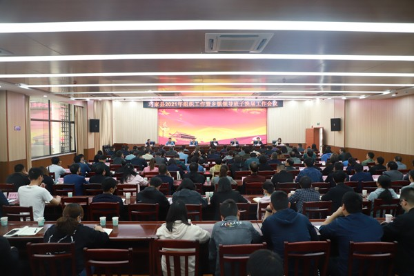 巧家县召开2021年组织工作暨乡镇领导班子换届工作会